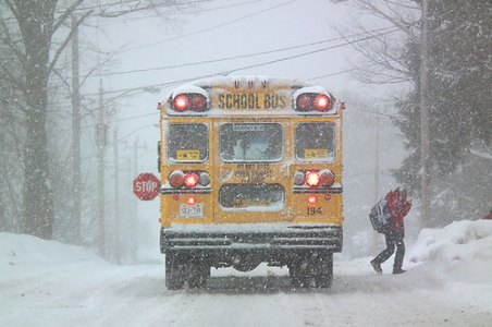 School bus drivers can be held legally liable if they are involved in an accident.